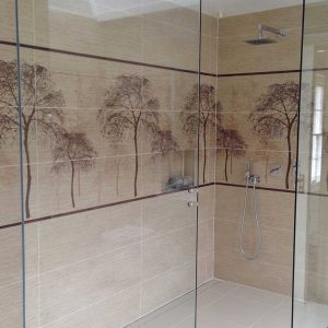 Wall Hung Frameless Glass Shower Enclosure