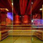 Frameless Glass Sauna Enclosure