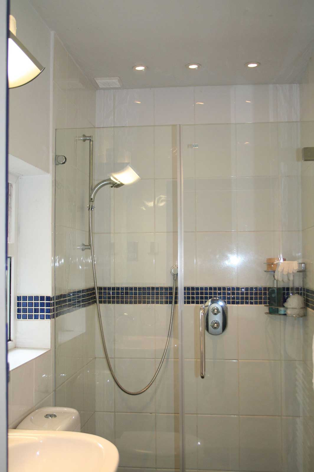 Custom Large Frameless Shower Enclosure